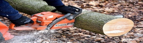 Trees Unlimited | SYS Enterprises | Indiana & Kentucky Tree Services