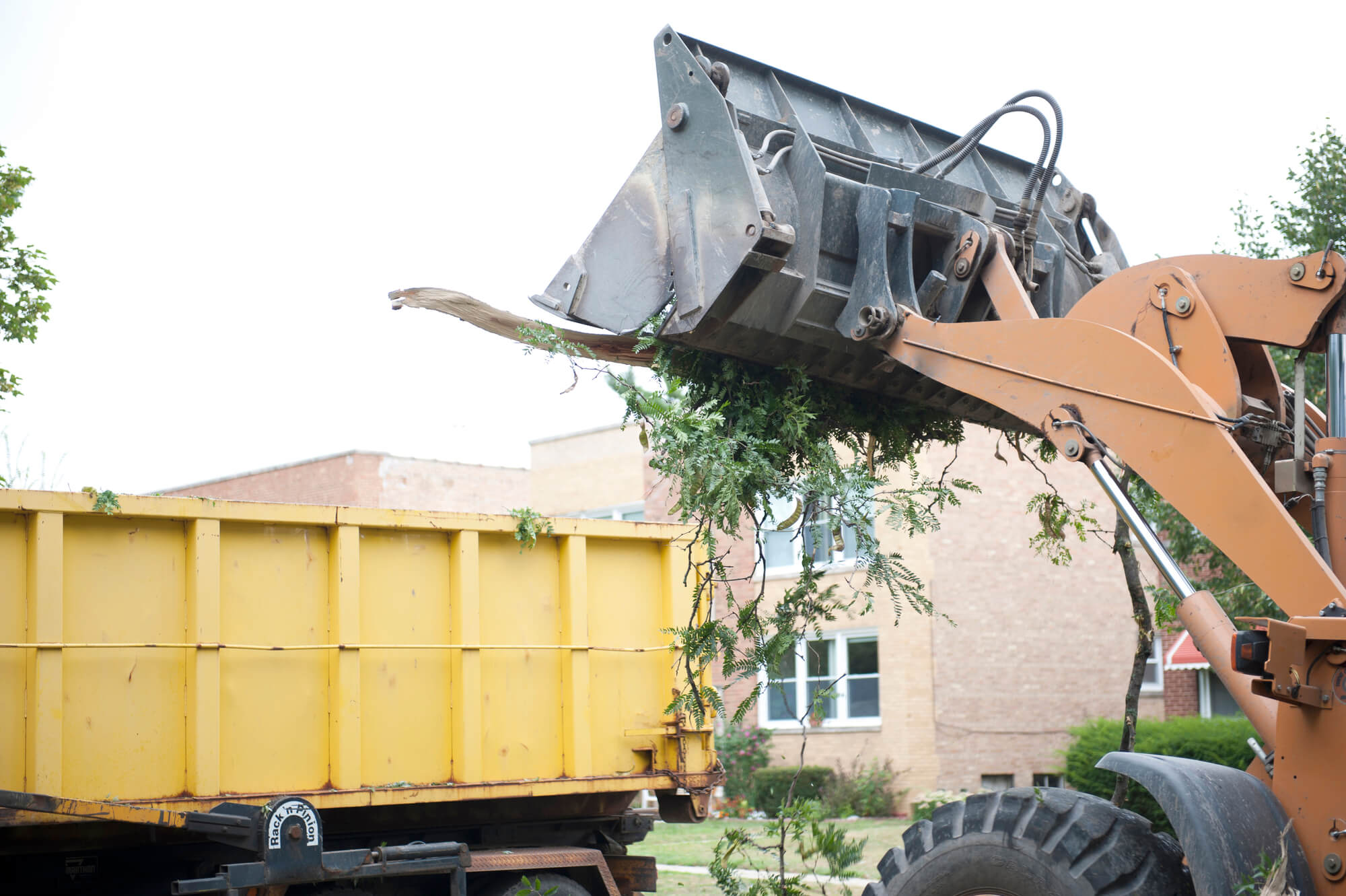 Indiana Emergency Tree Removal Services